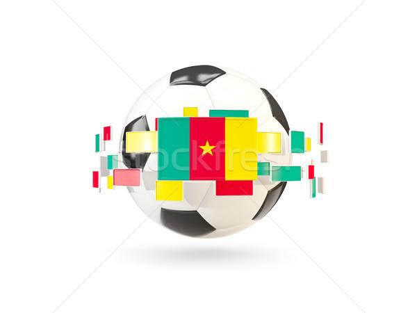 Piłka line flagi banderą Kamerun Zdjęcia stock © MikhailMishchenko