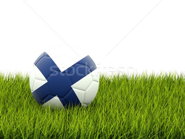 Voetbal vlag Finland groen gras voetbal veld Stockfoto © MikhailMishchenko