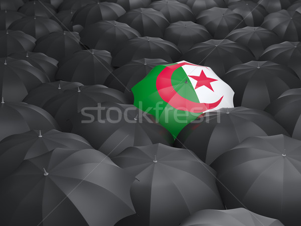 зонтик флаг Алжир черный дождь Сток-фото © MikhailMishchenko
