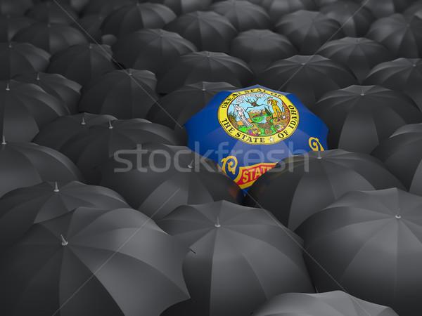 Idaho bandeira guarda-chuva Estados Unidos local bandeiras Foto stock © MikhailMishchenko