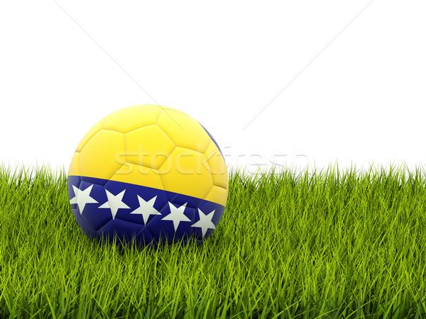 Fútbol bandera Bosnia Herzegovina hierba verde fútbol deporte Foto stock © MikhailMishchenko
