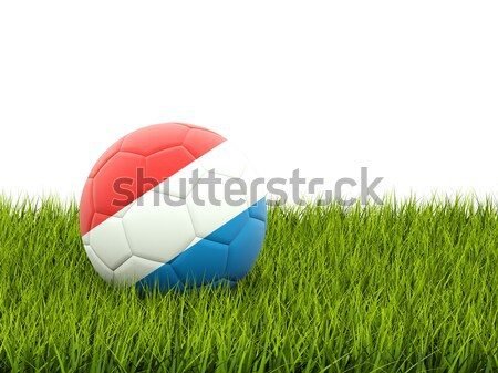 Football with flag of laos Stock photo © MikhailMishchenko