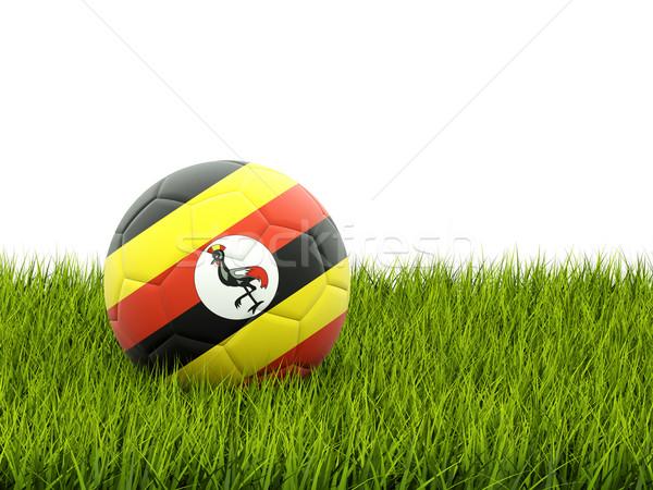 Futbol bayrak Uganda yeşil ot futbol dünya Stok fotoğraf © MikhailMishchenko