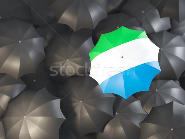Umbrella with flag of sierra leone Stock photo © MikhailMishchenko