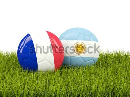 футбола флаг Аргентина зеленая трава Футбол области Сток-фото © MikhailMishchenko