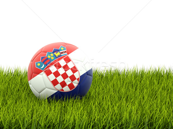 Football pavillon Croatie herbe verte football domaine Photo stock © MikhailMishchenko