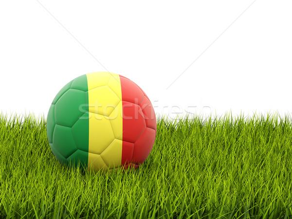 Fútbol bandera república Congo hierba verde fútbol Foto stock © MikhailMishchenko