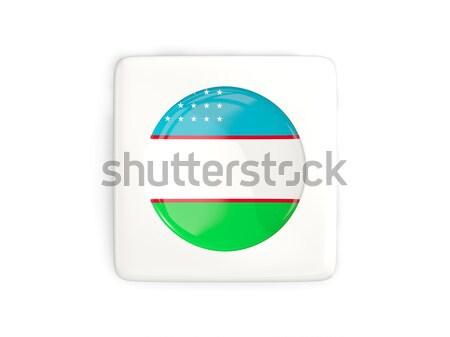 Icon vlag Gambia metaal frame reizen Stockfoto © MikhailMishchenko