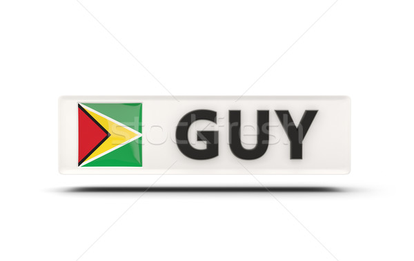 Vierkante icon vlag Guyana iso code Stockfoto © MikhailMishchenko