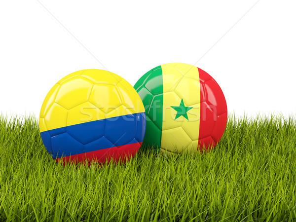 Colombia vs Szenegál futball zászlók zöld fű Stock fotó © MikhailMishchenko