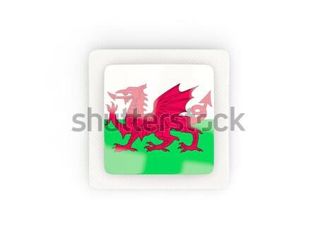 Tér ikon zászló Sri Lanka fém keret Stock fotó © MikhailMishchenko