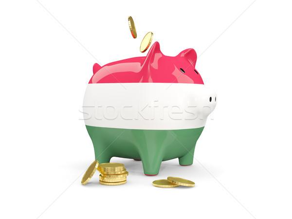 脂肪 貯金 ハンガリー お金 孤立した 白 ストックフォト © MikhailMishchenko