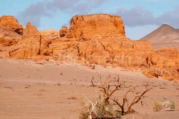 Khermen Tsav canyon in Gobi desert Stock photo © MikhailMishchenko