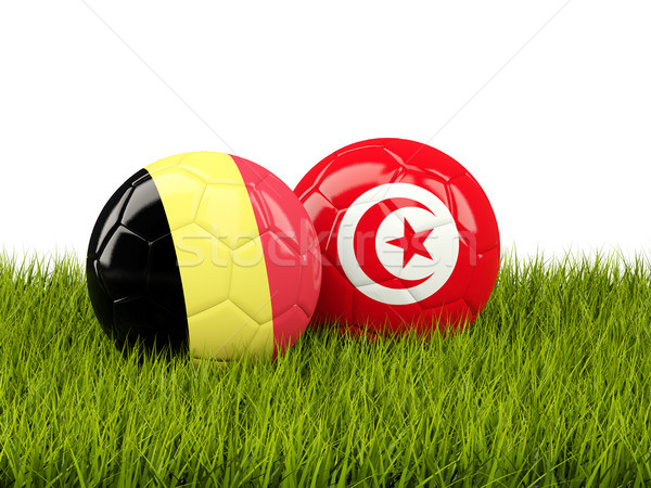Belçika vs Tunus futbol bayraklar yeşil ot Stok fotoğraf © MikhailMishchenko