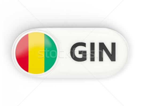 икона флаг Гвинея iso Код стране Сток-фото © MikhailMishchenko