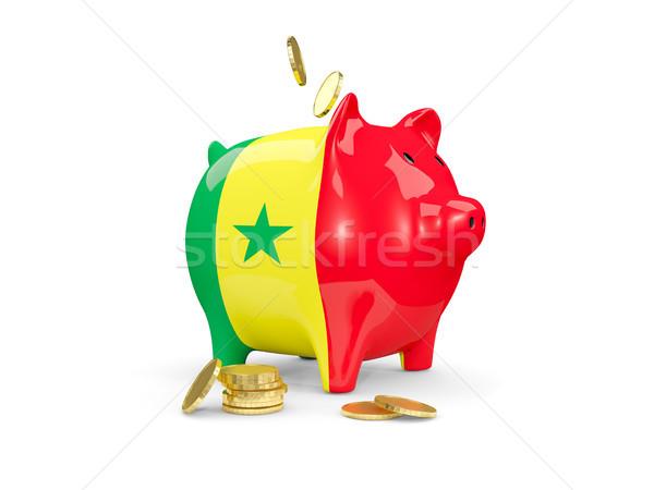 Kövér persely Szenegál pénz izolált fehér Stock fotó © MikhailMishchenko