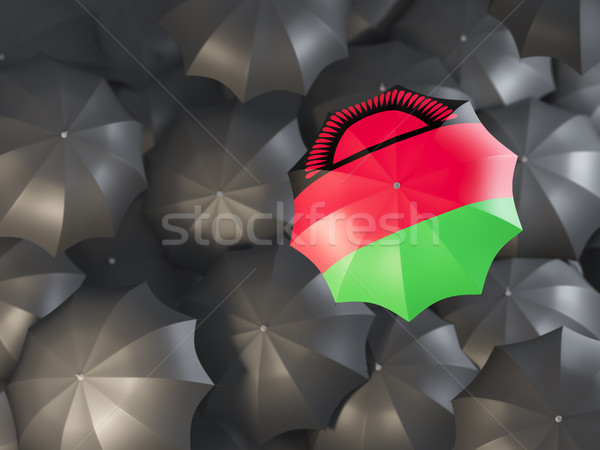 Umbrella with flag of malawi Stock photo © MikhailMishchenko