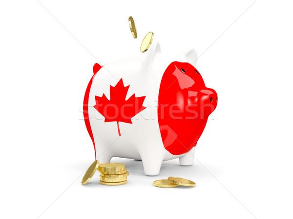 Vet spaarvarken Canada geld geïsoleerd witte Stockfoto © MikhailMishchenko