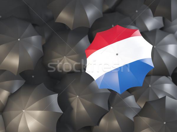 Paraplu vlag Nederland top zwarte parasols Stockfoto © MikhailMishchenko