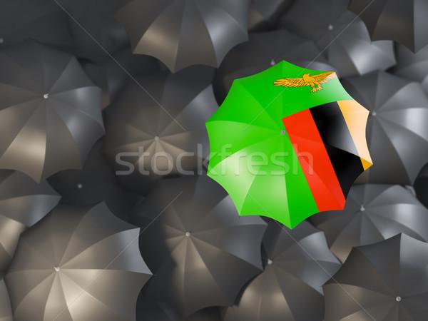 зонтик флаг Замбия Top черный Сток-фото © MikhailMishchenko