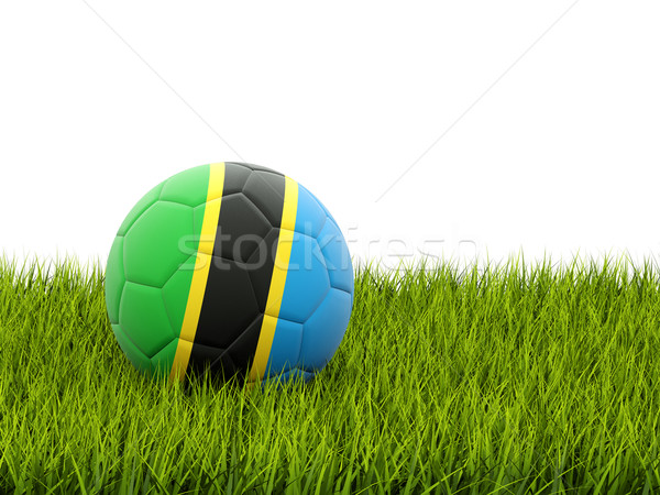Football with flag of tanzania Stock photo © MikhailMishchenko