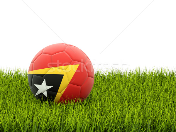 Football with flag of east timor Stock photo © MikhailMishchenko
