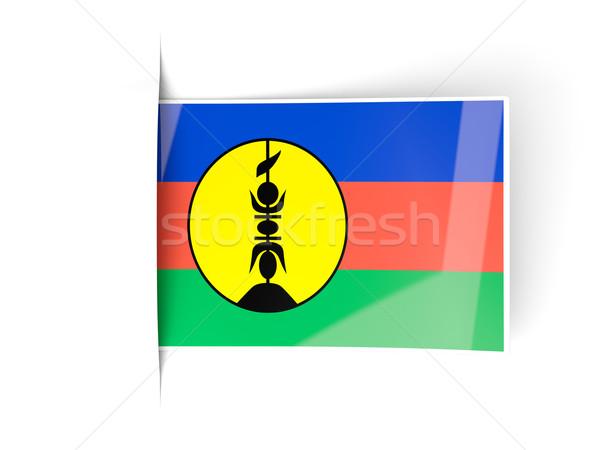 Square label with flag of new caledonia Stock photo © MikhailMishchenko