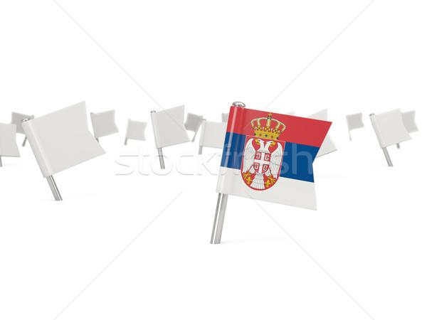 Kare pin bayrak Sırbistan yalıtılmış beyaz Stok fotoğraf © MikhailMishchenko