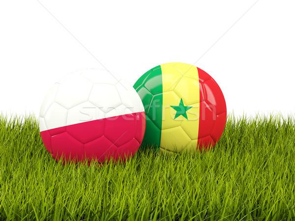 Polonia vs Senegal calcio bandiere verde Foto d'archivio © MikhailMishchenko