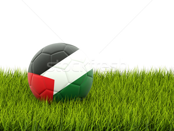 Football with flag of palestinian territory Stock photo © MikhailMishchenko