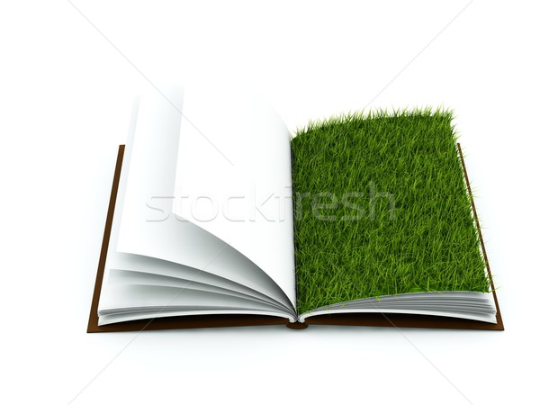 Book with grass on page Stock photo © MikhailMishchenko