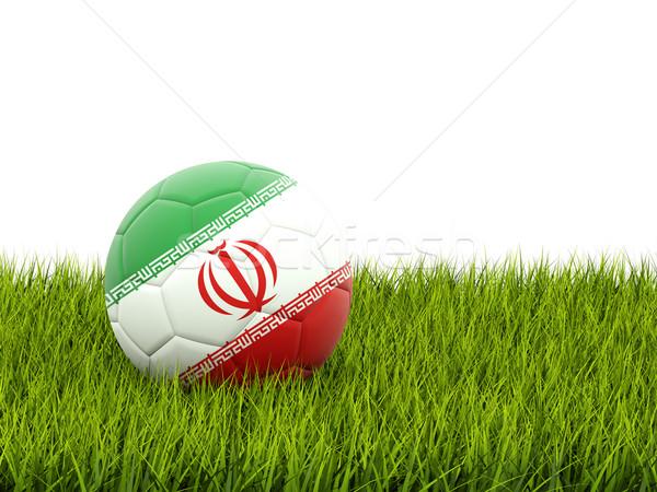 Stock fotó: Futball · zászló · Irán · zöld · fű · futball · világ