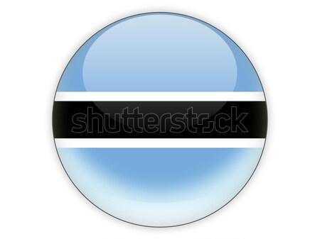 Icon vlag Estland geïsoleerd witte reizen Stockfoto © MikhailMishchenko