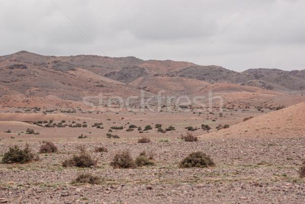 Alashan Plateau semi-desert. Southwest of the Eastern Gobi deser Stock photo © MikhailMishchenko