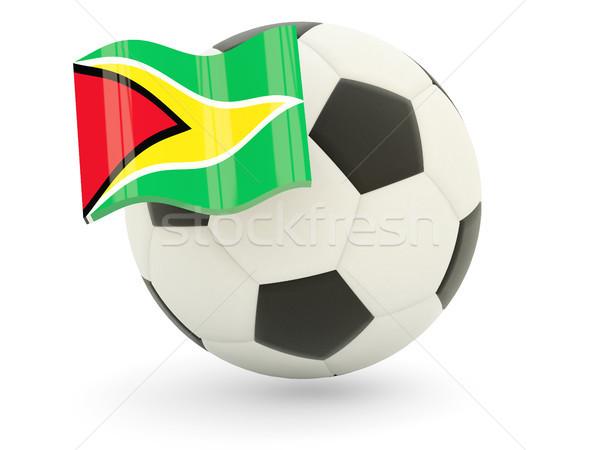 Futball zászló Guyana izolált fehér sport Stock fotó © MikhailMishchenko