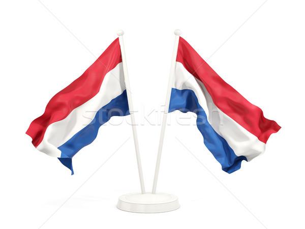 Zwei Fahnen Niederlande isoliert weiß Stock foto © MikhailMishchenko