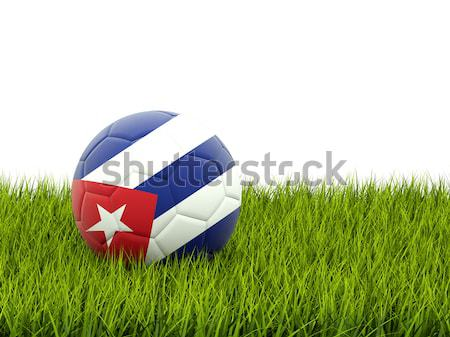 Angleterre vs Panama football drapeaux vert Photo stock © MikhailMishchenko