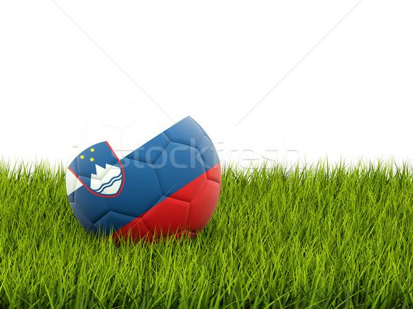 футбола флаг Словения зеленая трава Футбол области Сток-фото © MikhailMishchenko