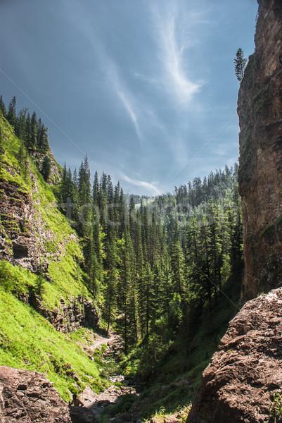 Alpine scenery at Altai Mountains Stock photo © MikhailMishchenko
