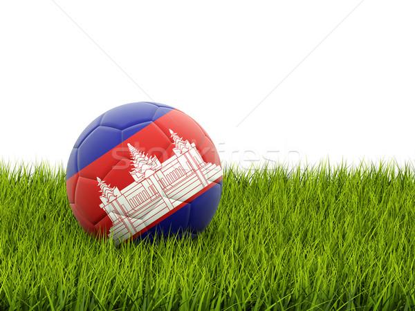 Voetbal vlag Cambodja groen gras voetbal veld Stockfoto © MikhailMishchenko