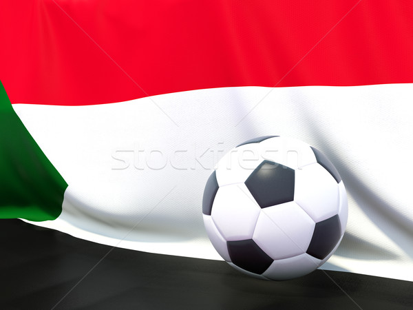 Flag of sudan with football in front of it Stock photo © MikhailMishchenko