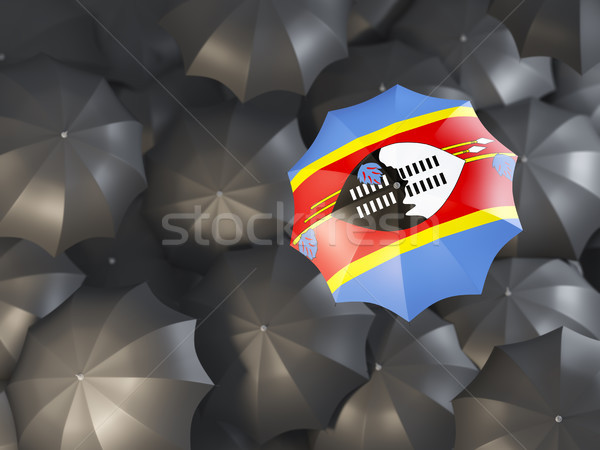 Umbrella with flag of swaziland Stock photo © MikhailMishchenko