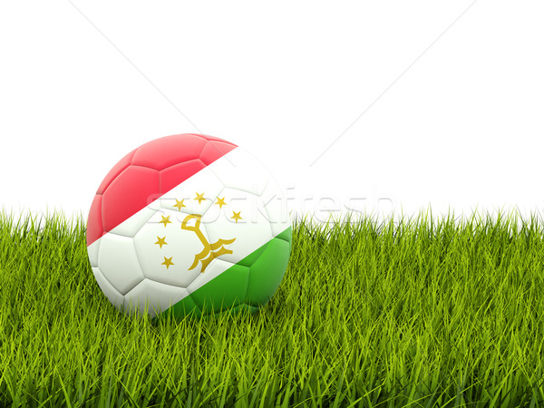 футбола флаг Таджикистан зеленая трава Футбол области Сток-фото © MikhailMishchenko