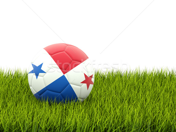 Football pavillon Panama herbe verte football monde Photo stock © MikhailMishchenko