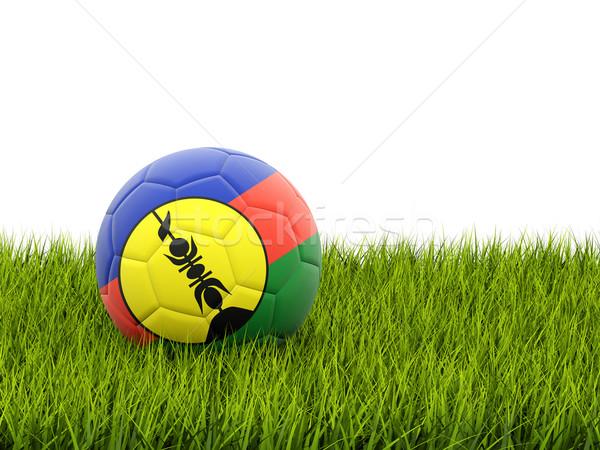 Football with flag of new caledonia Stock photo © MikhailMishchenko