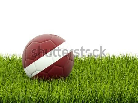 Piłka nożna banderą Botswana zielona trawa piłka nożna dziedzinie Zdjęcia stock © MikhailMishchenko
