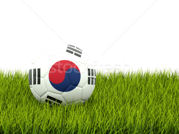 Football with flag of korea south Stock photo © MikhailMishchenko