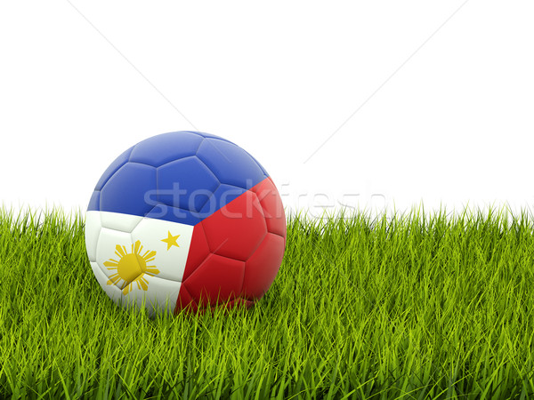 Futebol bandeira Filipinas grama verde futebol campo Foto stock © MikhailMishchenko