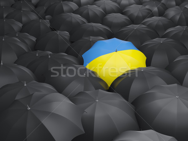 Umbrella with flag of ukraine Stock photo © MikhailMishchenko