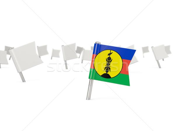 Square pin with flag of new caledonia Stock photo © MikhailMishchenko